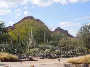 Phoenix Neighborhoods | AZ Luxury Real Estate Guide and Moving Resources